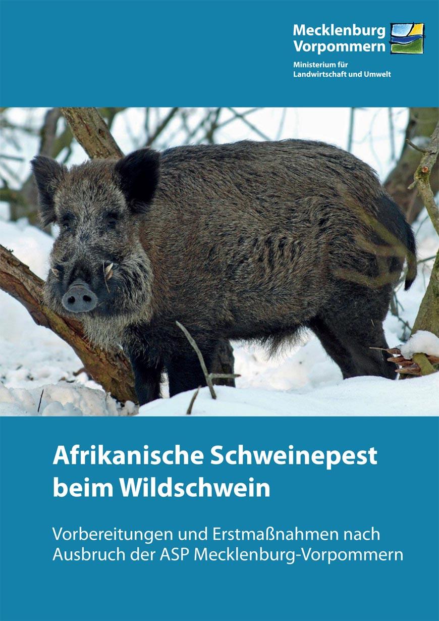 ASP-Broschüre Titelbild