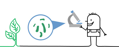 Zeichentrickmännchen mit Mikroskop und Pflanze