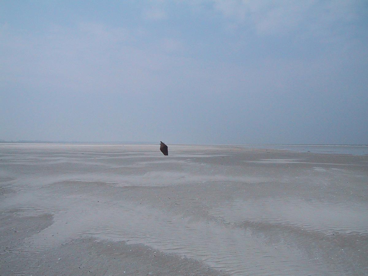 Windwatt bei Pramort im Nationalpark Vorpommersche Boddenlandschaft